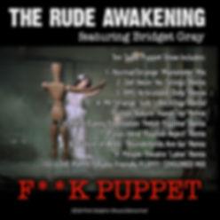 fuck puppet sleeve 2.jpg