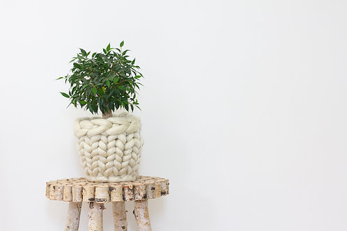 Large Knitted Plant Pot.