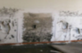 black-mold-1.jpg