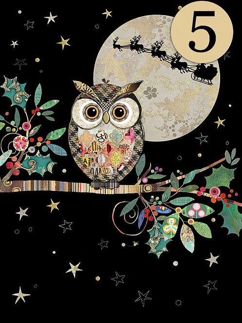Christmas Owl cards, 5 pack