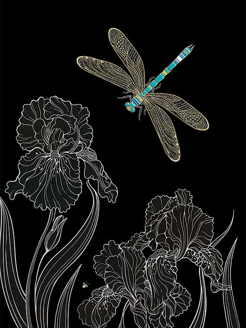 Dragonfly with Iris card