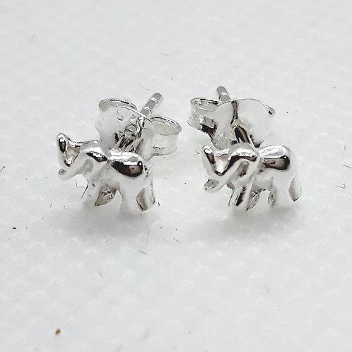 Silver elephant studs