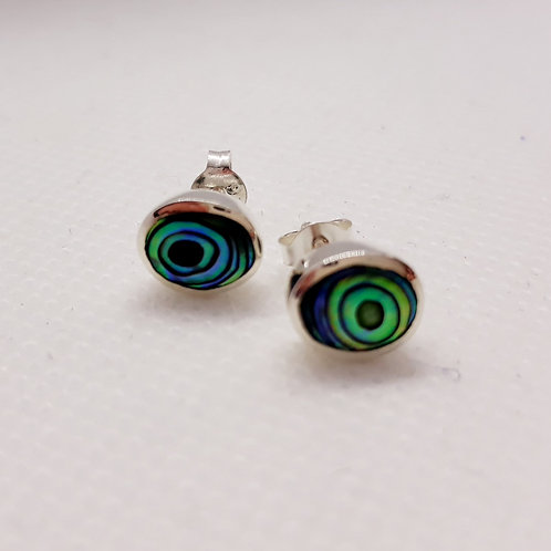 Sterling silver oval abalone studs