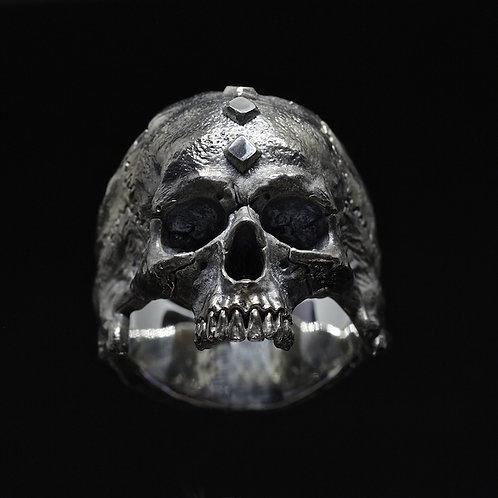 """Big Half-Jaws """"Clavus"""" Skull"""