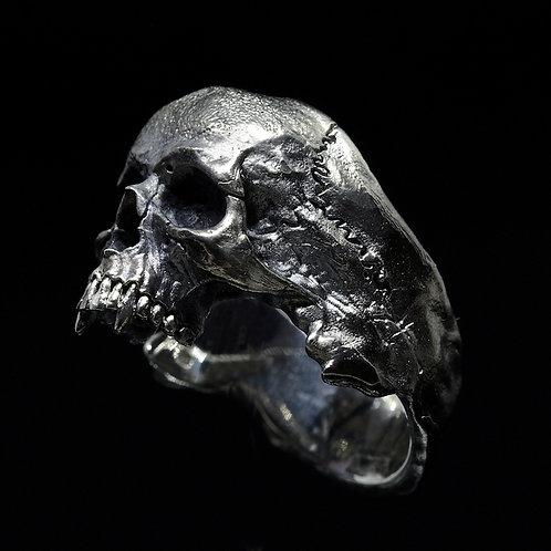 Big Half-Jaws Vampire Skull