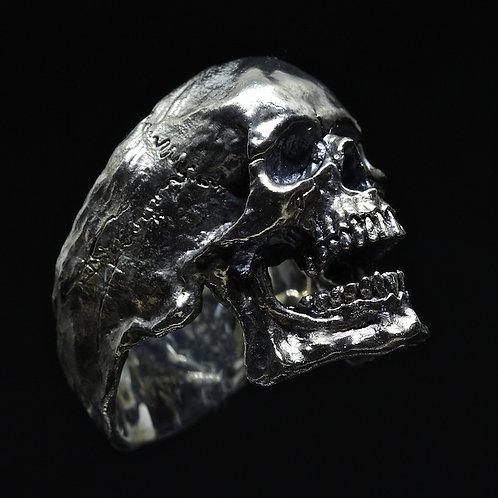Open Jaws Skull