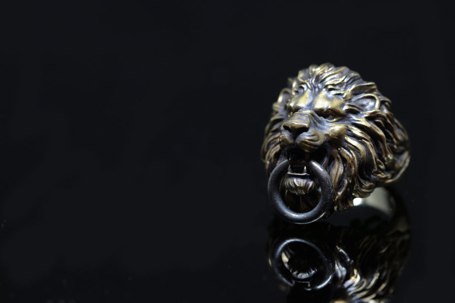 Lion Ring Decem.jpg