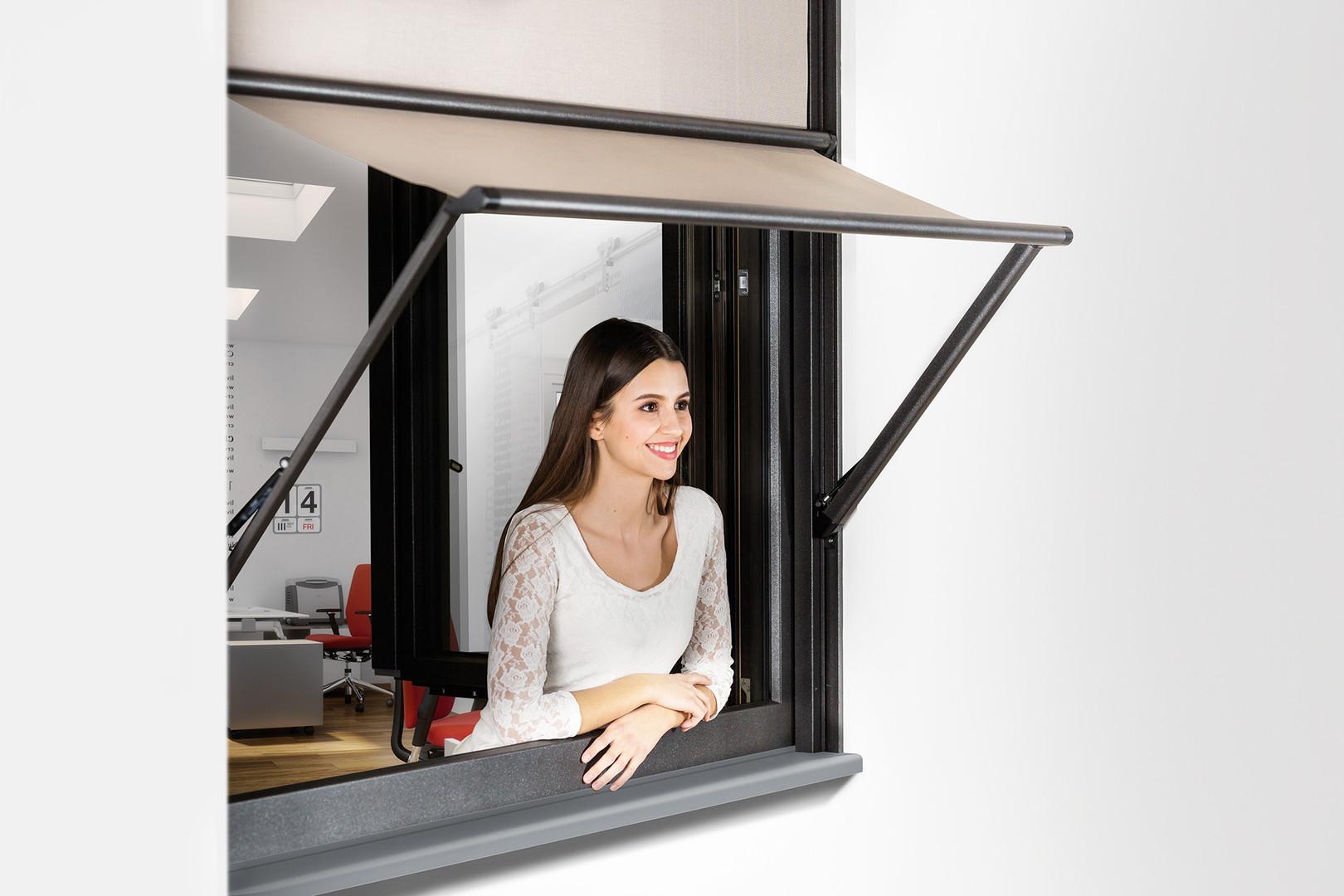 Vertical_Window_VMB (www).jpg