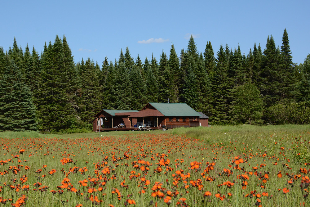 The old Fish & Game cabin from the 1920s refurbished as Pete Blodgett Cabin