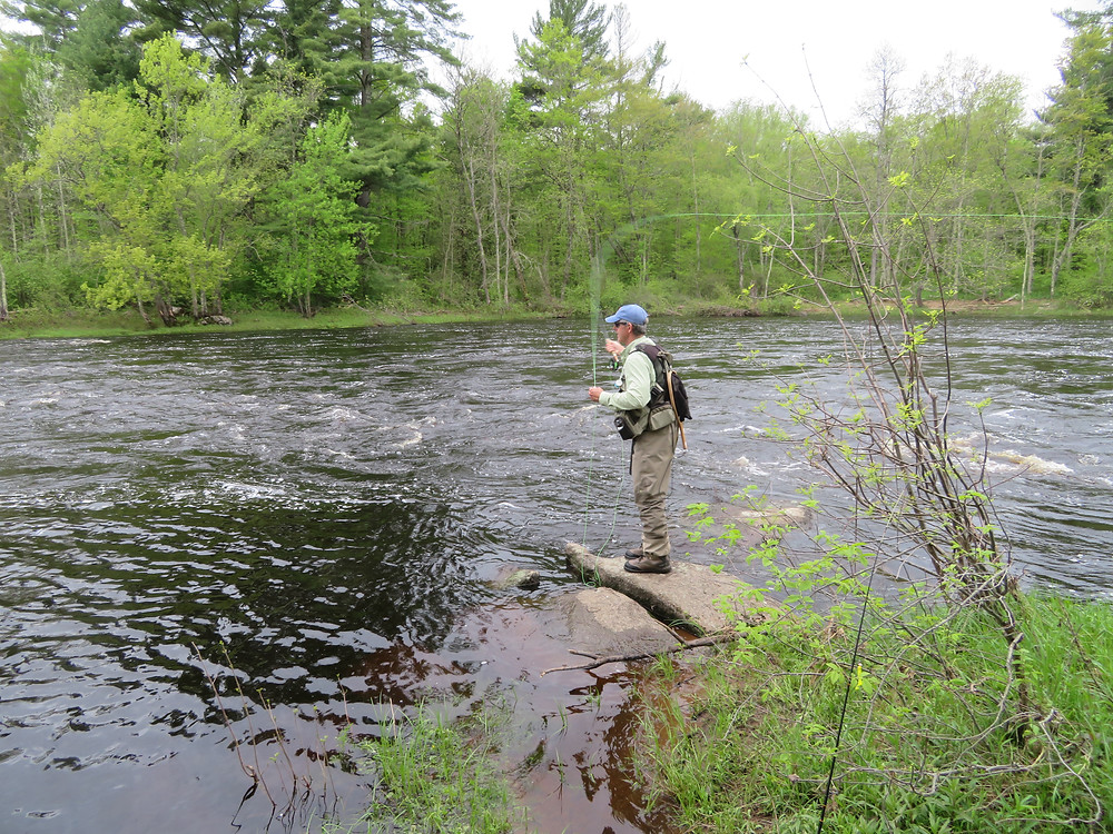 DVW on the South Fork of the Flambeau River