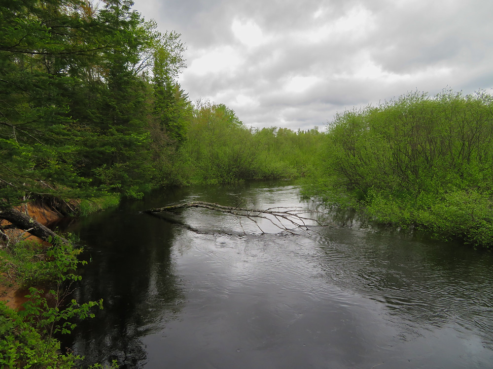 The Fox River, which plays the Big Two-Hearted River in Hemingway's story of the same name.