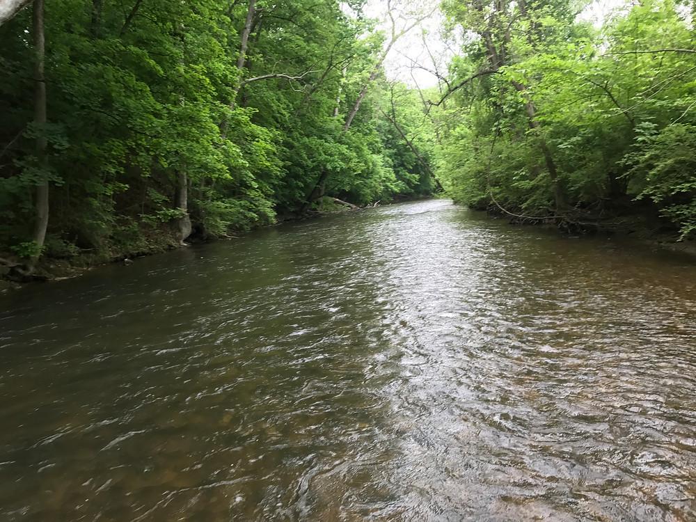 Yellow Breeches Creek just downstream of The Run
