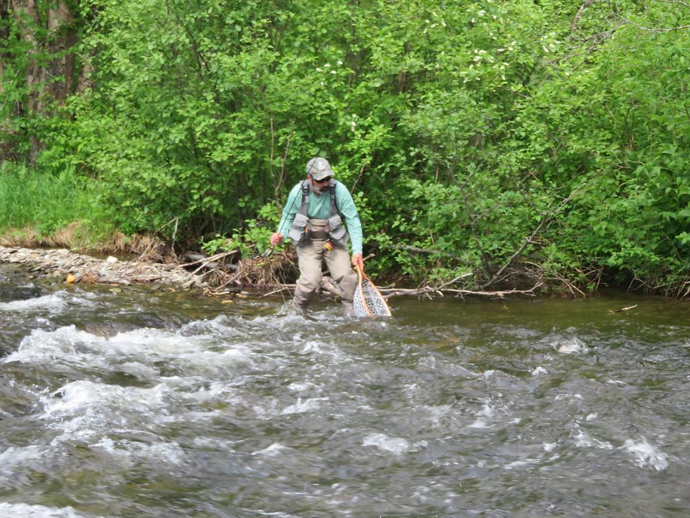Ron Ouellette lands a brook trout.