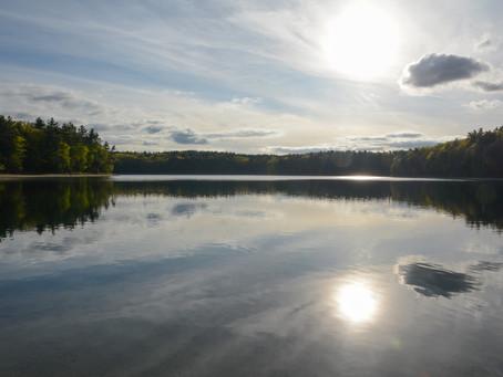 Inspiration at Walden Pond
