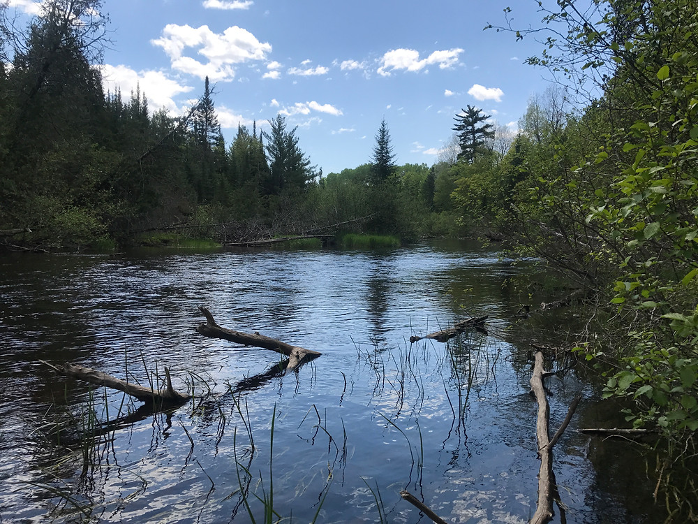North Branch of the Au Sable River in Michigan.