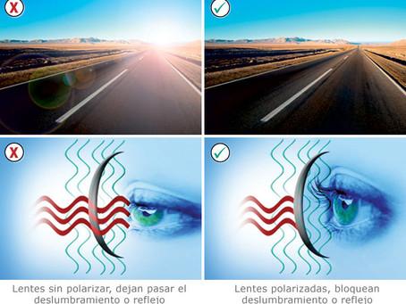 Las lentes polarizadas ¿Qué son y como funcionan?