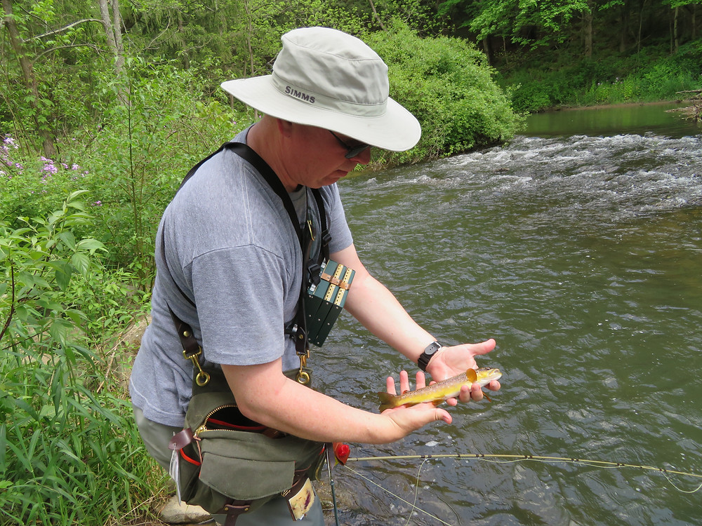 Phil landed a small wild brown trout in Spruce Creek