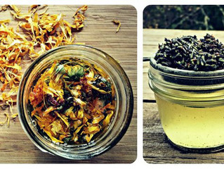 SAVE THE DATE! Lotions And Potions Workshop - Herbs and Essential Oils