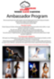 Dream Ambassadors program.jpg