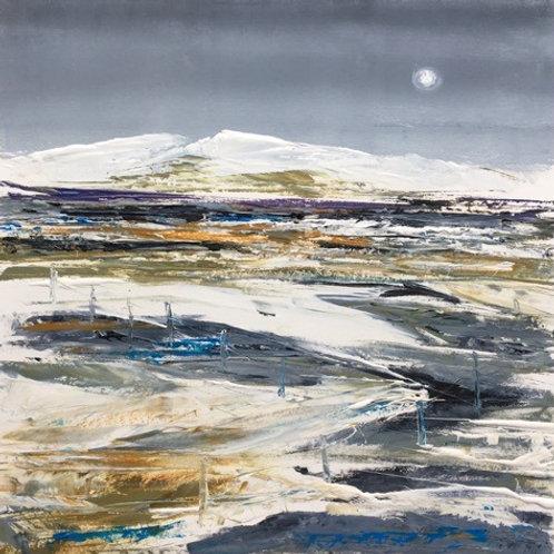 Dartmoor Snowscape