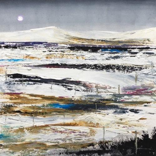 Dartmoor snow fields