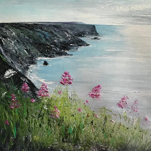 Cliffs path at Hells Mouth