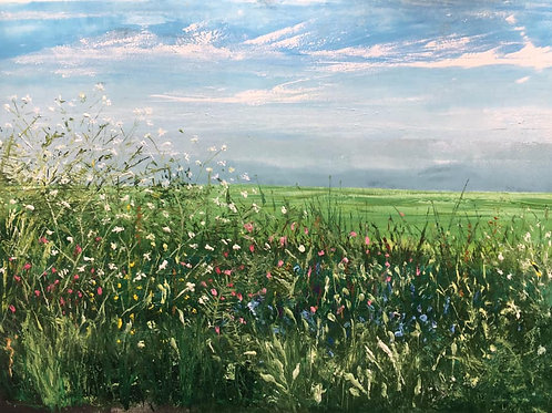 Cornish spring hedge