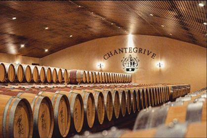 Château de Chantegrive Vins de Graves