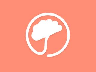 😌 Product Snapshot: Mindset Health 🧠