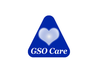 📉 Product Snapshot: GSO Care 👴🏻