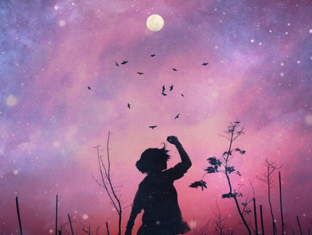 27.04.2021 SUPERVOLLMOND -pink moon