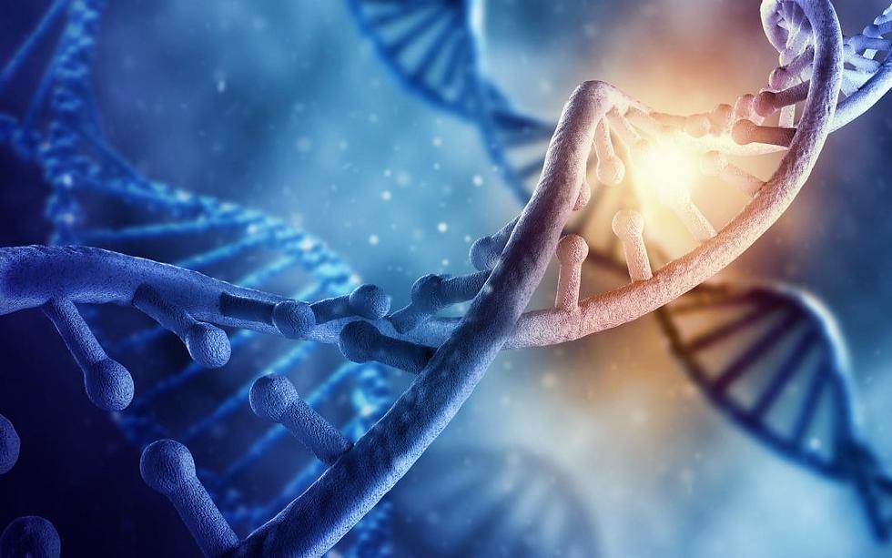 DNA Aktivierung Portaltage.png
