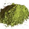 algen 1.jpg