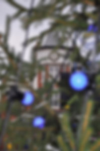 Through the Christmas tree.jpg