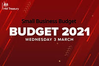 Small business Budget_2021.jpeg