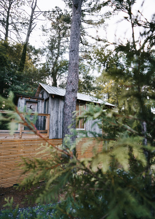 Pine Meadows-10.jpg