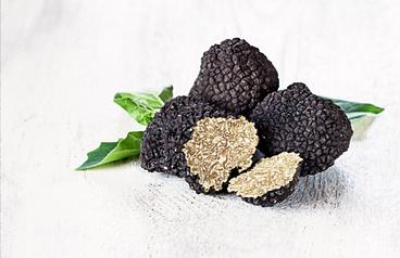 truffles.png