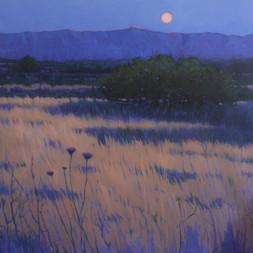 """""""Desert Moon"""""""
