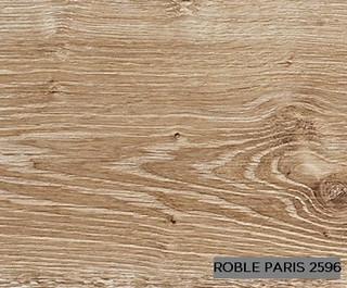 Strong roble paris 2596.jpg