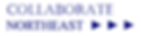 cropped-Temp-Logo-Collab-NE.png