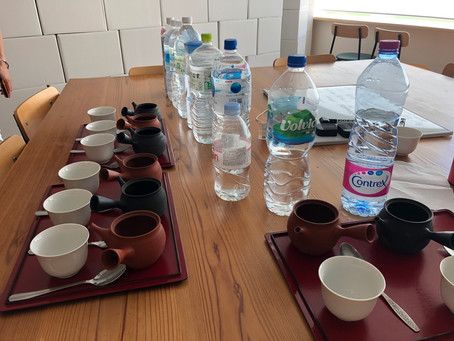 Sencha spotlight: Brewing Japanese green tea with different brands of water
