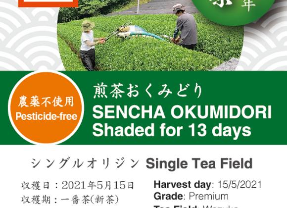 2021 Sencha First Flush: Okumidori - 13 days shaded