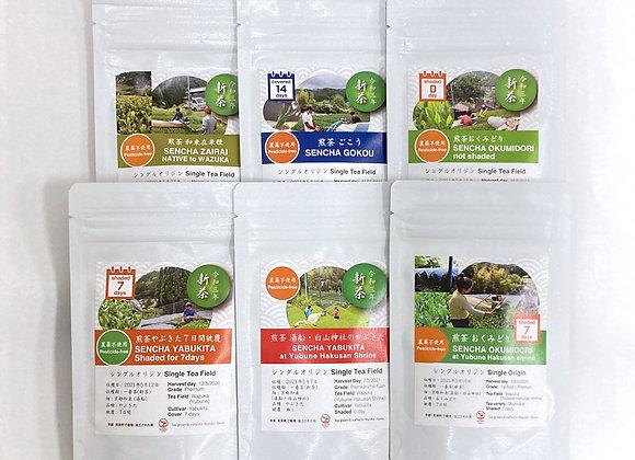 Sencha (Japanese green tea) Starter Kit