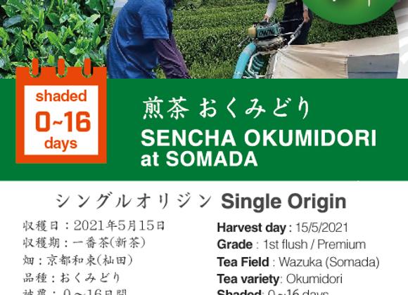 2021 Sencha First Flush: Okumidori - Somada