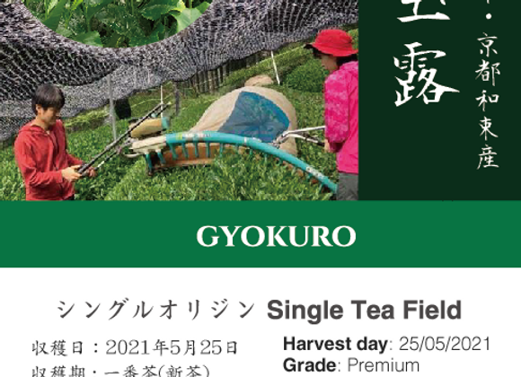 2021 Sencha First Flush: Gyokuro