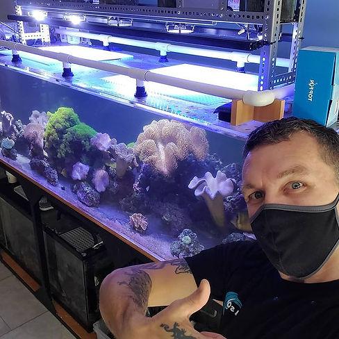 300 gallon peninsula aquarium