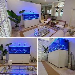 Red Sea 750 Aquarium