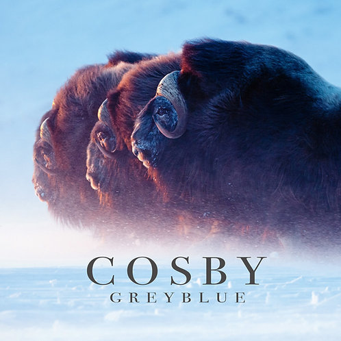 "COSBY - ""Greyblue"" Single"