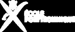 Logo Ecole polytechnique_horizontal-blan