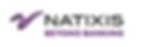 q_natixis_beyond-banking.png